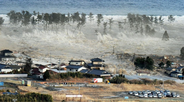Japanese Tsunami Hits Tree line