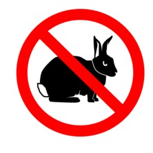 No_rabbits_sm